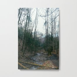 Stream, Red River Gorge, KY. 2015 Metal Print