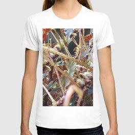 Dragon Fight    [PLANTS]   [VINES] T-shirt