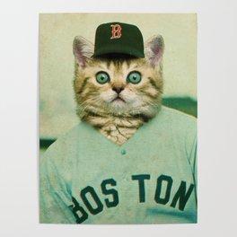 Baseball Kitten #3 Poster