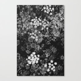 The Flowers (Black and White) Canvas Print
