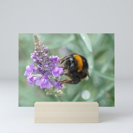 Hello Flower! Mini Art Print