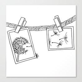 Dandelion in photos Canvas Print