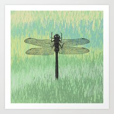 Dragonfly ~ The Summer Series Art Print