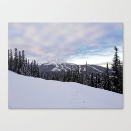 Mountains behind the trees Canvas Print