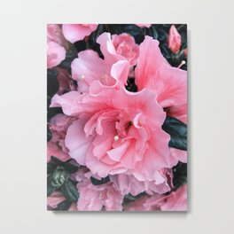 Pink Flower Photography Spring Easter Art Metal Print