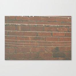 Washing Line. Canvas Print