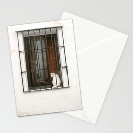 White Cat Perched on Window Ledge . Travel Photography . Sevilla, Spain Stationery Cards