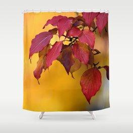 BRIGHT AUTUMN COLORS Shower Curtain
