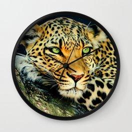 Leopards Gaze 3 Wall Clock