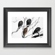 Turkey Vultures Framed Art Print