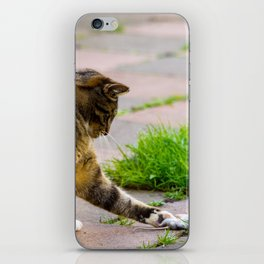 Cat playing with his prey. iPhone Skin