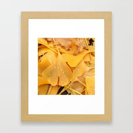 Ginko Framed Art Print
