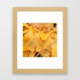Ginko Framed Art Print