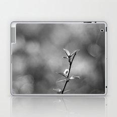 Spring Begins in Black and White Laptop & iPad Skin