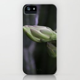 Quiet Morning iPhone Case