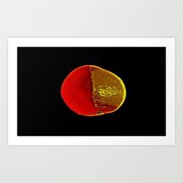 The Legendary Orange Art Print