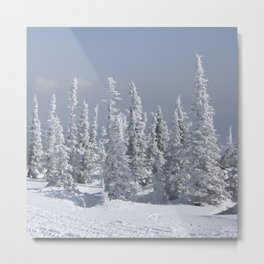Winter season Metal Print