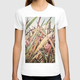 Lopez Grass T-shirt