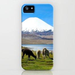 Chungara Lake, Chile iPhone Case