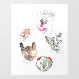 Crazy Cats 2 Art Print