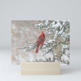 Snow Scene Cardinal Mini Art Print