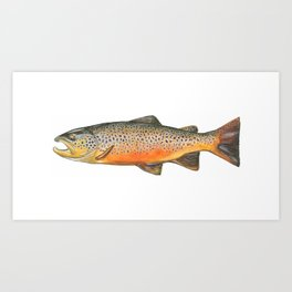 Smith River Brown Art Print