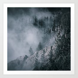 Enchanting forest 7 Art Print