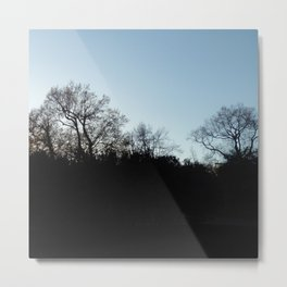 Nature, landscape and twilight 2 Metal Print