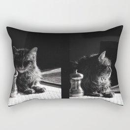 Salt Pepper and the Cat Rectangular Pillow
