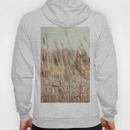 Marsh Grasses Hoody