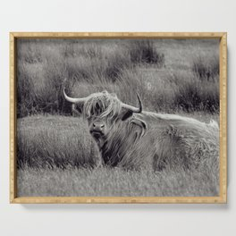 Highland cow in black and white, in Scotland - Fine Arts Nature Photography Serving Tray
