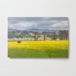 Yellow Fields Along The Eel River Metal Print