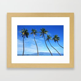 Maui Palm Trees Framed Art Print
