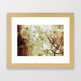Living Canvas Framed Art Print
