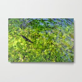 Wild mountain water. Mountains river Metal Print