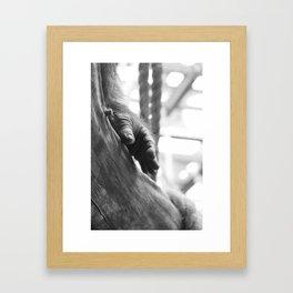 kong... Framed Art Print