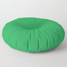 Dunn & Edwards 2019 Trending Colors Get Up and Go Green DE5636 Solid Color Floor Pillow