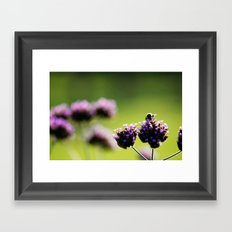 holding on to summer Framed Art Print