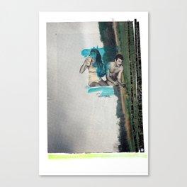 Domestication Of Fair Canvas Print