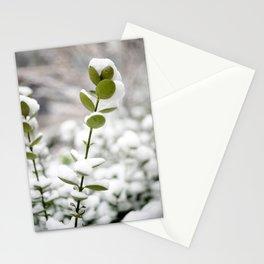 Flower Photography by Molotov Karminski Stationery Cards