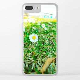 Daisies in Clinch Park - Traverse City, Michigan Clear iPhone Case