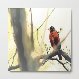 Robin in the Fall Painting Metal Print
