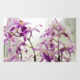 Orchids in Purple Rug