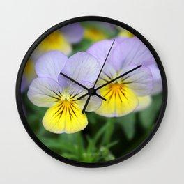 yellow purple pansy flower Wall Clock