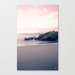 Laguna Beach #25 Canvas Print