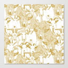 just goats gold Canvas Print