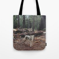 sweden Tote Bags featuring Injured Coyote by Kevin Russ