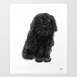 Charlie the Dog - charcoal/chalk drawing Art Print