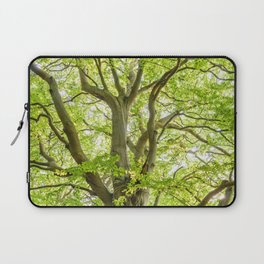 Beech Tree Laptop Sleeve