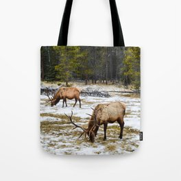 Jasper Locals- Male Elk/Wapiti Tote Bag